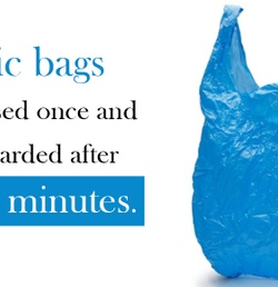 The State of the Plastic Bag Ban: What's Next?