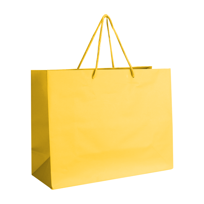 Sun Medium Matte Shopper Bag