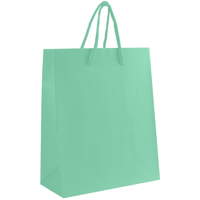 Aqua Small Matte Shopper Bag