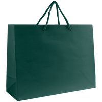 Hunter Green Medium Glossy Shopper Bag Thumb