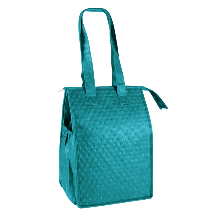 Teal Snack Pack Insulated Cooler Tote