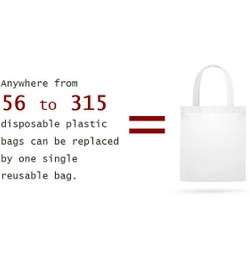 Florida and California Pushing for Statewide Ban of Plastic Bags to Protect Environment