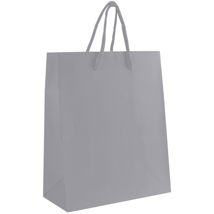 Platinum Small Matte Shopper Bag