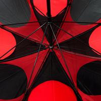 Gemini Umbrella Thumb