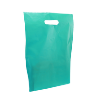 Teal Medium Frosted Die Cut Bag Thumb