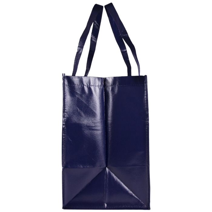 Laminated Big Storm Grocery Bag