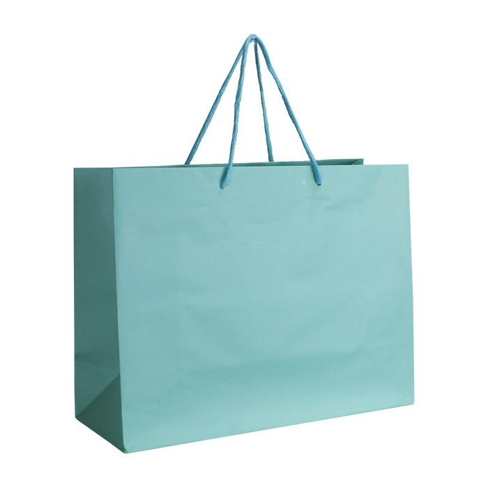 Aqua Medium Matte Shopper Bag