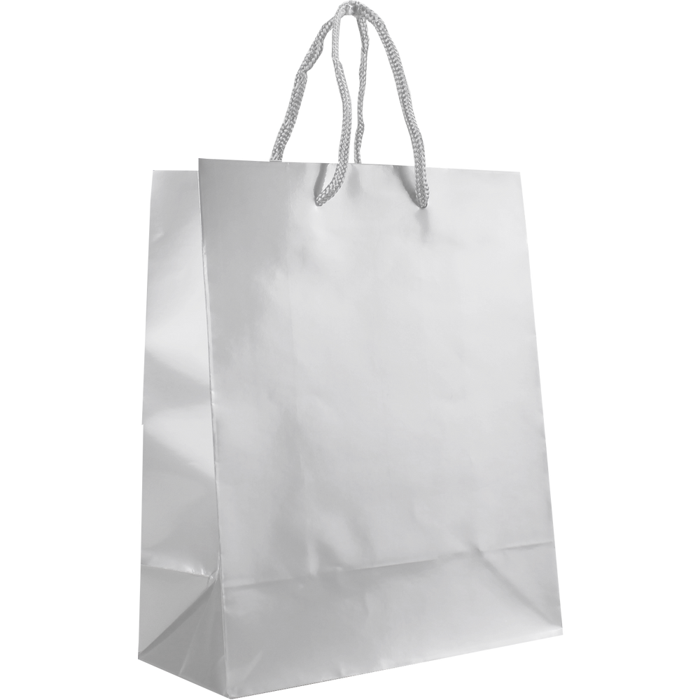 f45a895ea0f Small Glossy Shopper Bag / Paper Bags and Tote Bags / Holden Bags