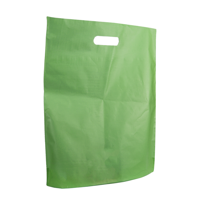 Lime Large Frosted Die Cut Bag