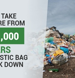 These 3 Uses for Reusable Bags Can Help Clean Up the Environment