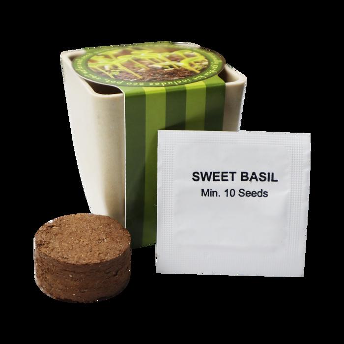 Basil Planter Starter Kit