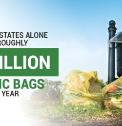 6 Reasons Reusable Bags Are Better Than Plastic in Every Way