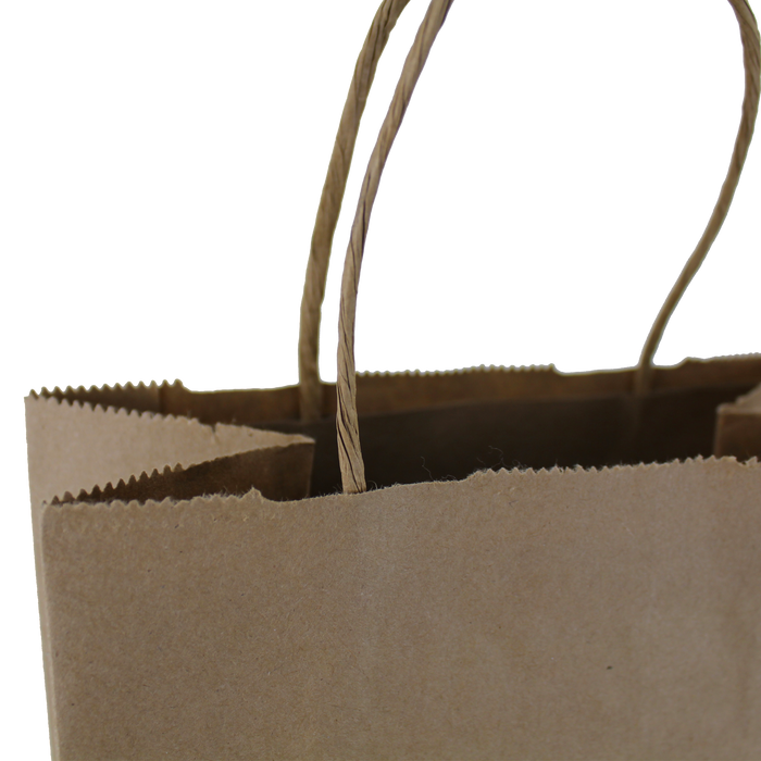 Kraft Paper 2 Bottle Tote