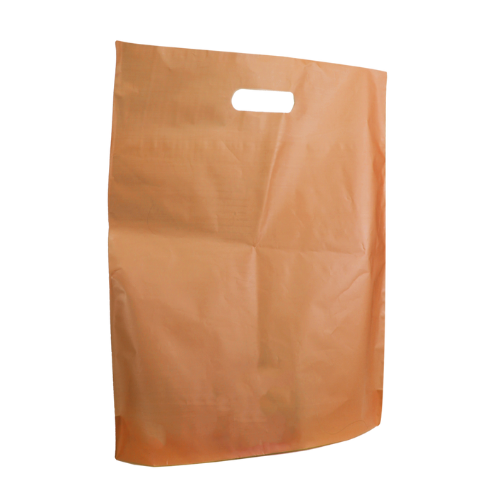 Tangerine Large Frosted Die Cut Bag