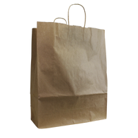 Natural Tall Kraft Paper Shopper Bag Thumb