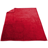 Red Taos Microfleece Throw Thumb