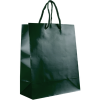 Hunter Green Small Glossy Shopper Bag Thumb